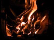 Kaminholz und Brennstoffe